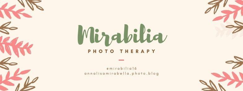 Annalisa Mirabella Photography